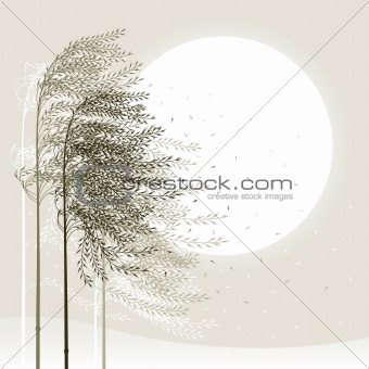 Winter reed background
