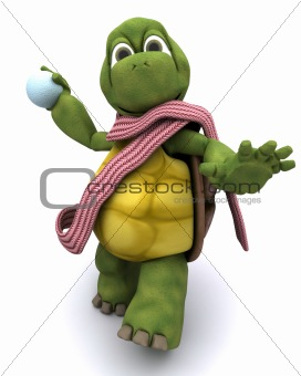 tortoise throwing a snowball