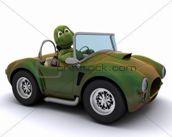 tortoise driving a car
