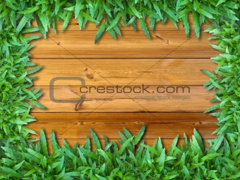Frame of Green Grass on Wood