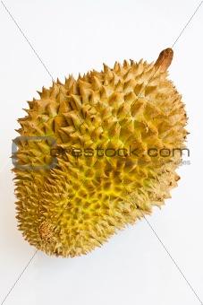 Single whole durian isolated on white background