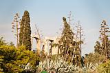 Temple of Olimpian Zeus, Athens, Greece