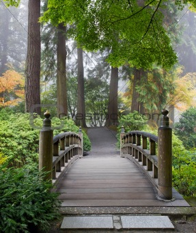 Foggy Morning at Wooden Foot Bridge at Japanese Garden