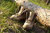 Pair of trekking boots in forest