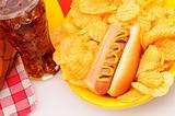 Closeup Picnic Table with hot dog chips soda