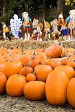 Fall market.