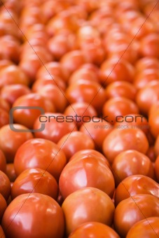 Tomatoes at produce market.