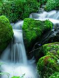 The little waterfall