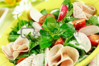 Fresh spring vegetable salad