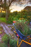 Wheel barrow