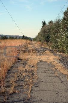 Abandoned Road