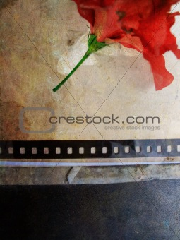 Grunge background with flower