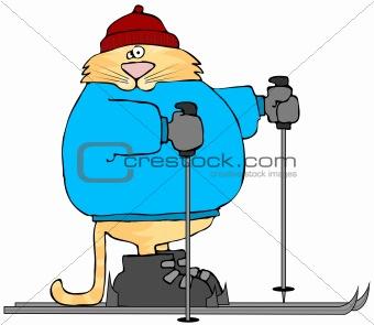 Cat On Skis