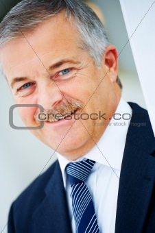 Cheerful senior business man