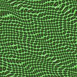 Green patterned canvas