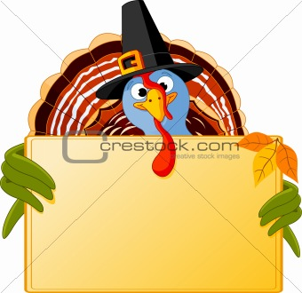 Cartoon Turkey Banner