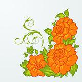 cute orange flowers isolated