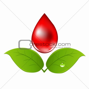 Blood Drop With Leafs