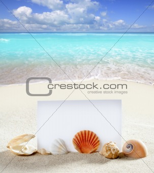 beach vacation sand pearl shells snail blank paper
