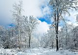 Snowbound winter earthroad