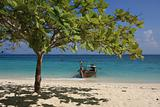 Longtail boat and beach tree at Bamboo Island