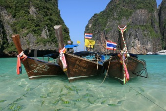 Longtail boats in purple water with fish at Maya Bay