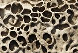 Rock erosion holes in the sea wall, Western-Super-Mare. 