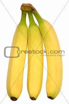 Three bananas, isolated on a white background.
