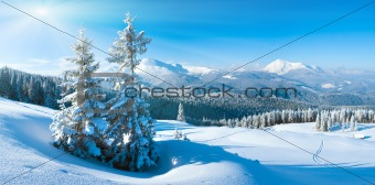 winter mountain panorama