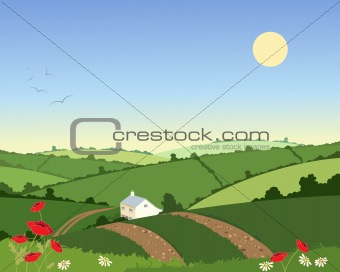 country cottage in summer