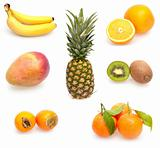 Collection of Tropical Fruits