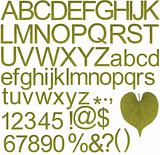 Green alphabets, numbers and special characters
