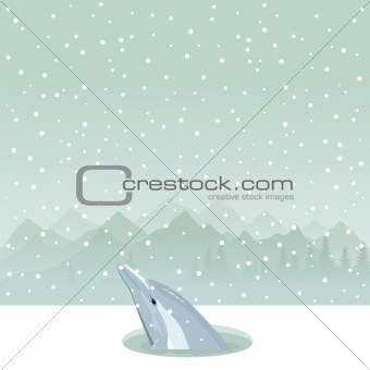 Dolphin in an ice-hole