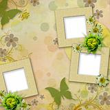 Summer frames with green butterfly, flowers 