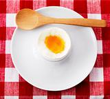 Soft boiled egg in eggcup with wooden spoon