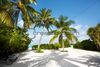Tropical pathway - Sandy road leading to beach