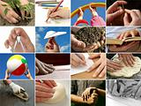 human hands collection