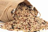 Wild Rice
