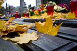 Autumn leafs on cemetery bench