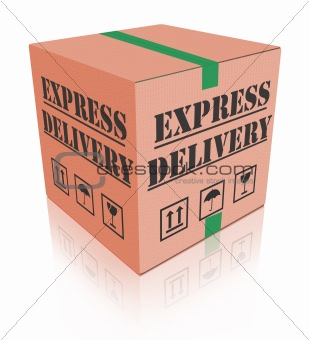 express delivery carboard box package