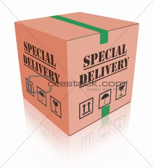 special delivery carboard box package