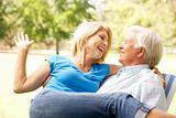Portrait Of Senior Couple Enjoying Day In Park