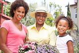 Senior Woman With Adult Daughter And Granddaughter Gardening Tog