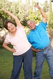 Senior Couple Exercising In Garden