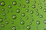 Water drops over green background
