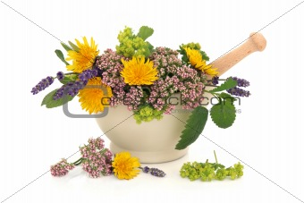 Herb Flower Selection