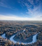 Forest river of winter