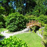 Japanese Garden, Powerscourt Gardens, County Wicklow, Ireland