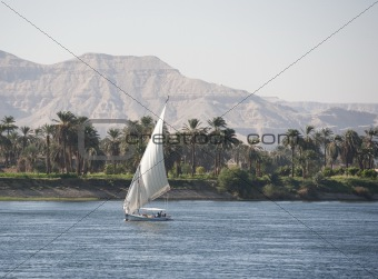 Sailing felluca on the river Nile