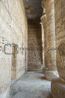 Hieroglypic carvings in an egyptian temple